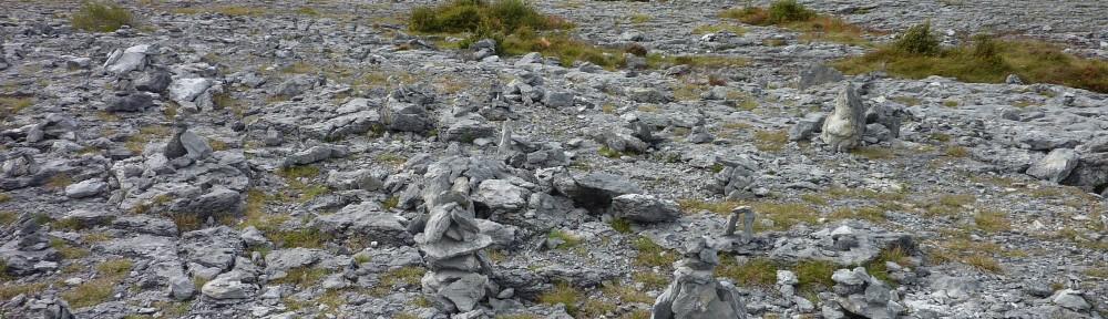 Ben Gooden – Ecological Research